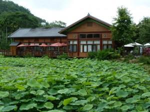 Chapelle Paper Dome, puis Meifeng Farm 梅峰農場 région de Wushe