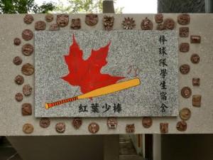 Comté de Taitung. Horng Yeh youth baseball mémorial hall