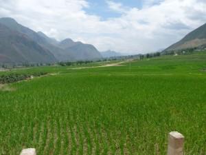 Gongshan, Bingzhongluo
